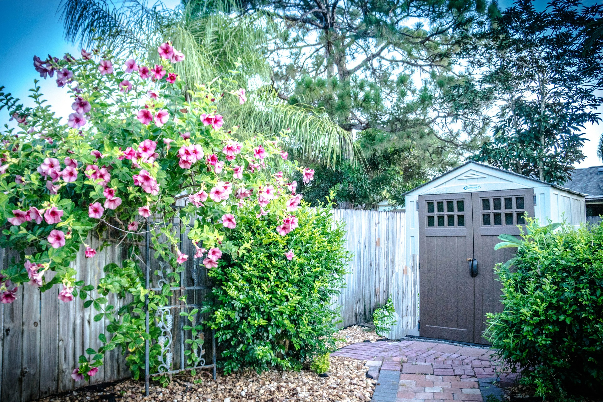 Maintaining Your Shed